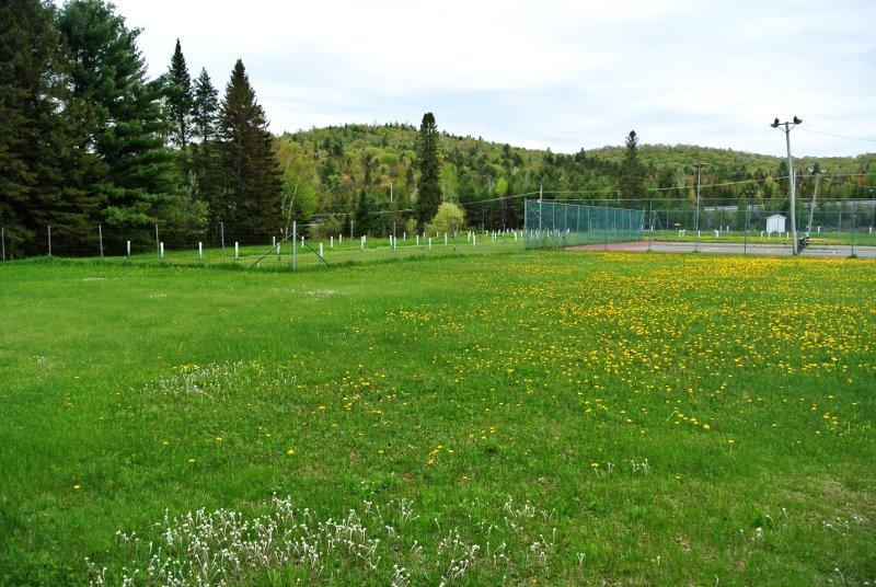 Le Parc Municipal: un immense terrain plat