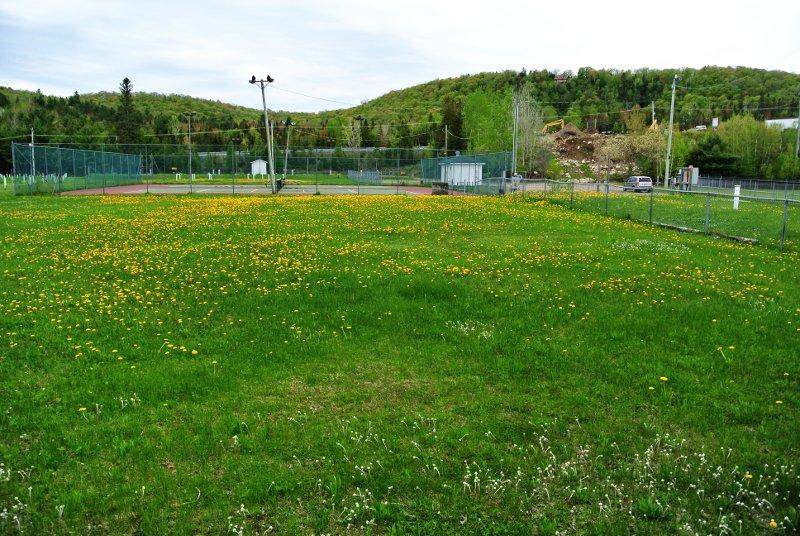 Le Parc Municipal: un immense terrain plat (2)