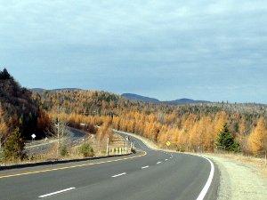L'autoroute de Chertsey