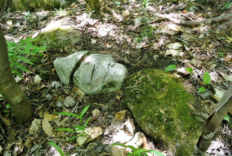 Une pierre taillée en silex blanc dans la forêt au bord de l'ancienne rivière