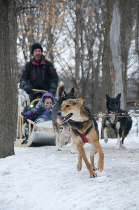 467db6af00 Winter Wonderland in Montreal's Nature Parks