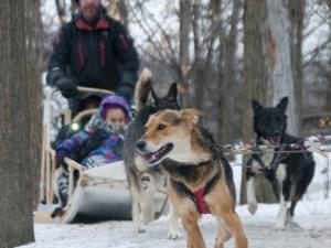 Fête des neiges de Montréal. Winter 2016. Parc Jean Drapeau. Photo Marlene Wilson.