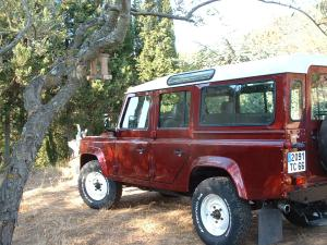 Big Red Defender