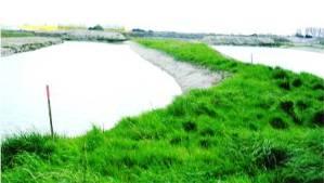 Les bassins creusés
