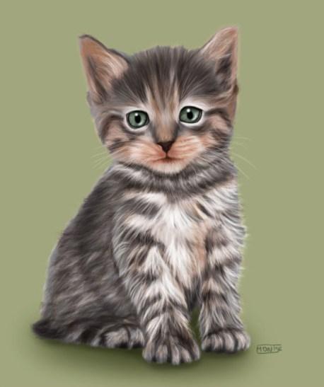Gatet | Gatito | Kitten