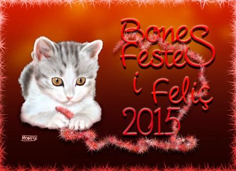 Postal de Nadal de 2014. | Postal de Navidad del 2014. | Christmas Card for 2014.