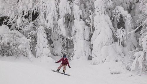 27-33cm de neige 29 Janvier SUTTON