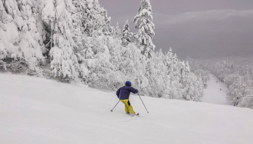 27-33cm de nouvelle neige 29 Janvier SUTTON