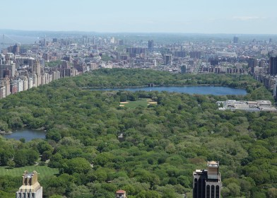 View of Central Park from the Rock