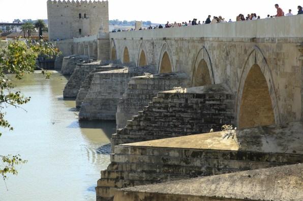 Cordoba Bridge