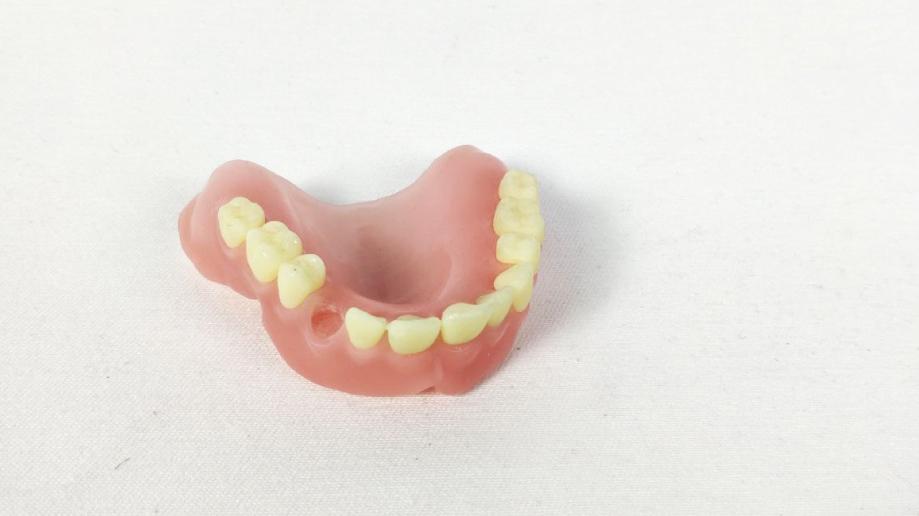 stampa 3d dentale modelli di studio sharebot monza