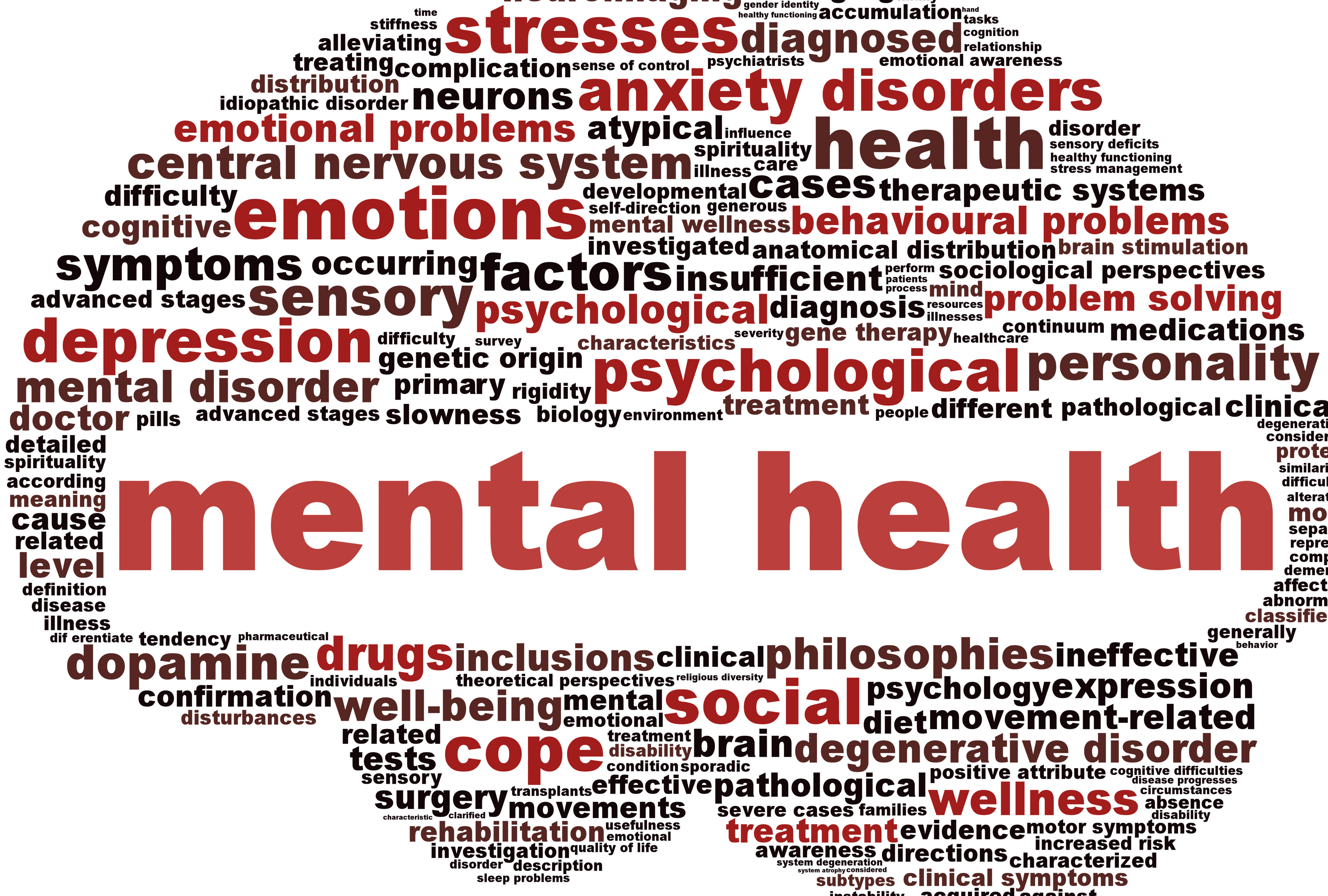 Previous Mental Illness Diagnosis And Other Health