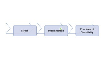 Inflammation and Punishment Sensitivity