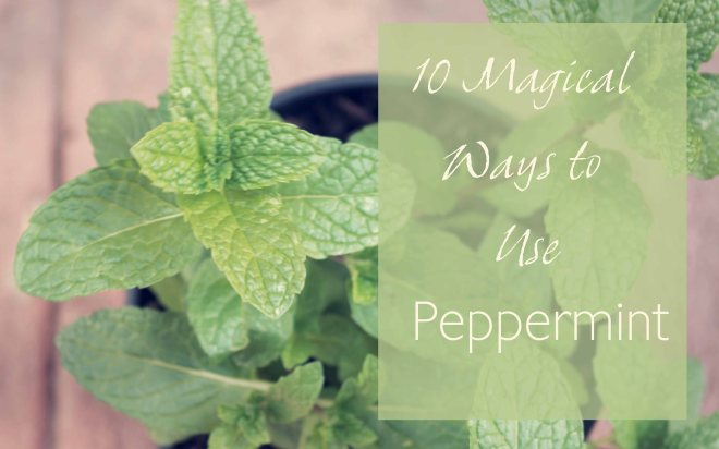 10 Ways to Use Peppermint