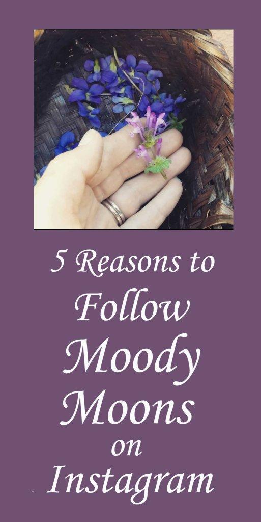 Follow Moody Moons on Instagram