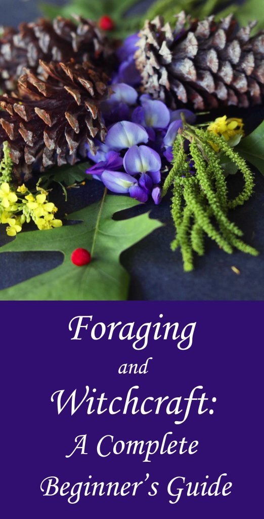 How to get to know the plants, stones and other natural items in your area and use them in witchcraft.