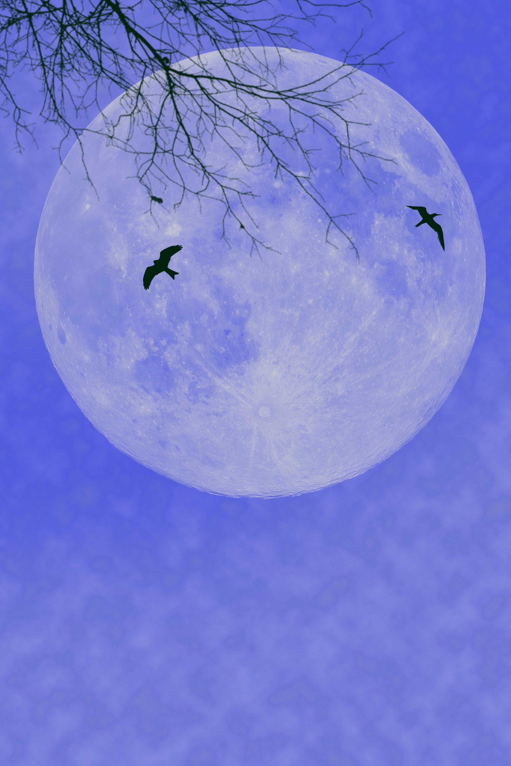 The 2020 blue moon falls on Samhain. Here's how to make the most of it.