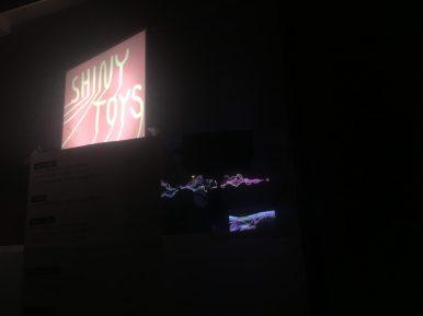 ShinyToys2016_562