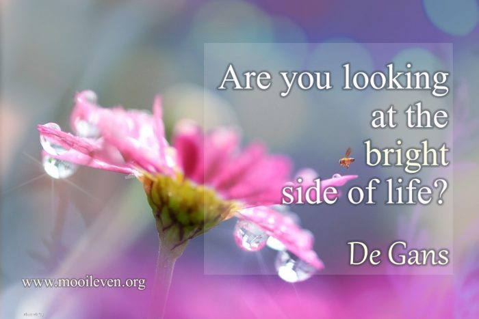Are you lookig at the bright side of life