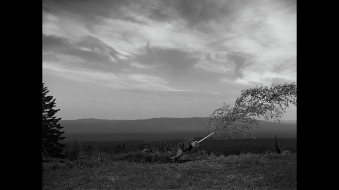 Ingmar Bergman The Virgin Spring