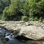 清徹的溪流