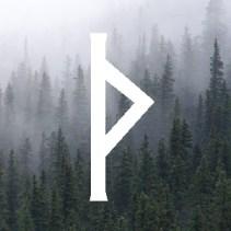 Руна Турисаз. Значение, активация, проживание, медитация 2