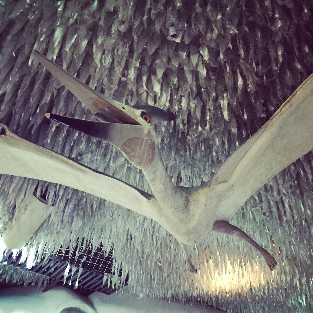Pterodactyl in City Museum.