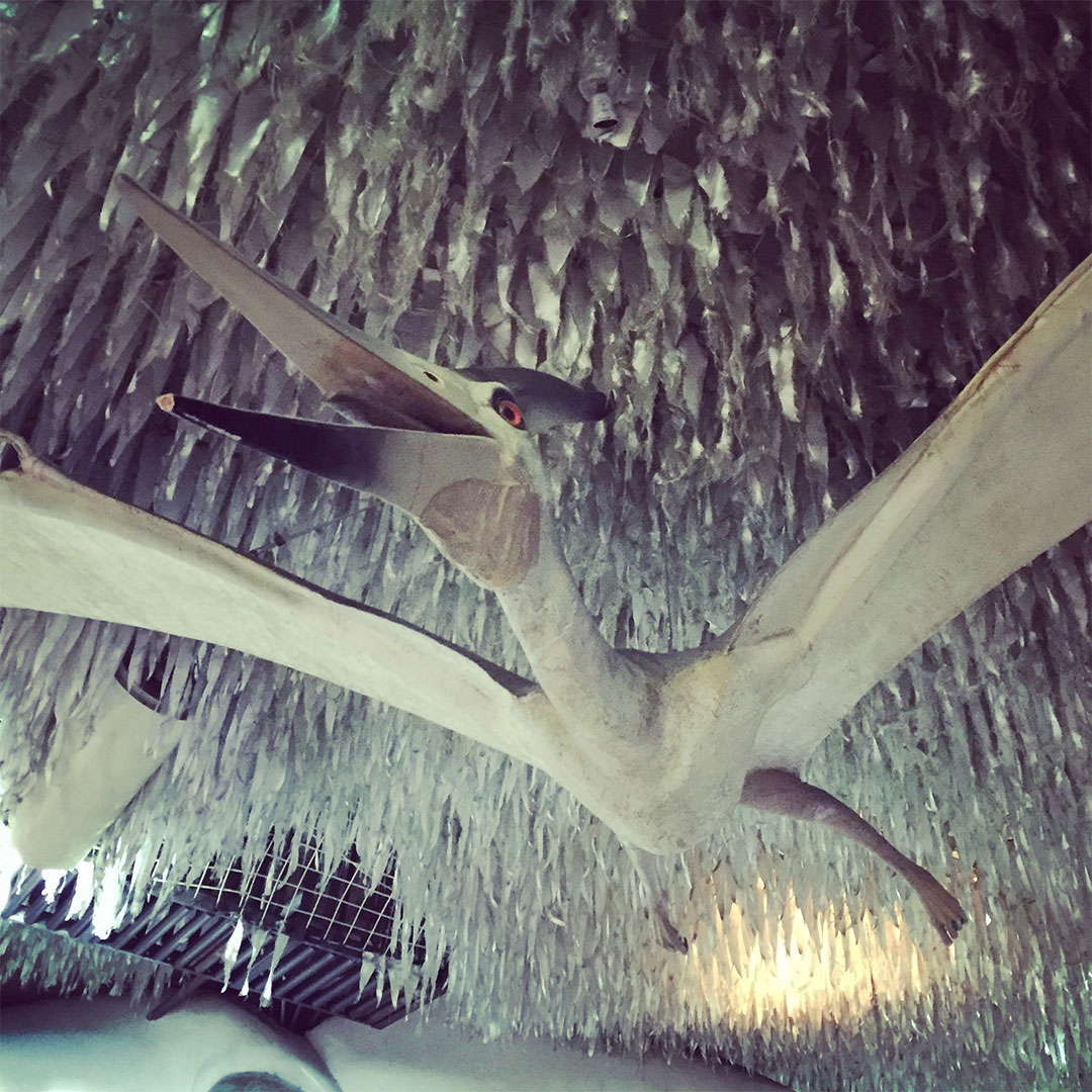 Pterodactyl in City Museum.