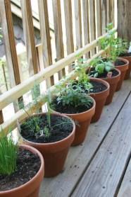 Herb garden <3