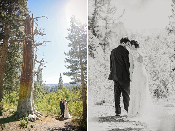 18-tamarack-lodge-twin-lakes-mammoth-wedding-photographer