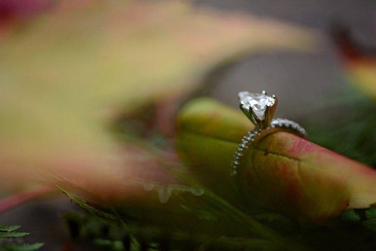 nashville-tennessee-adventure-wedding-photographer-fall-creek-falls-engagement-17