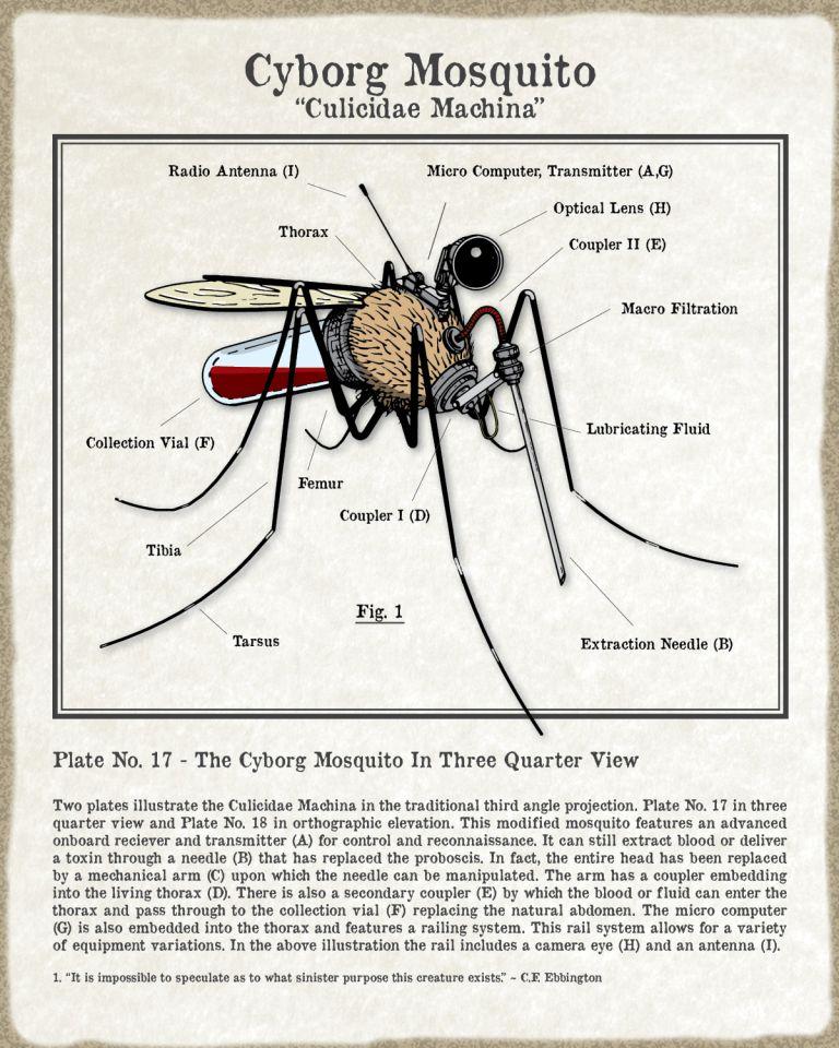 Mosquito-Draft