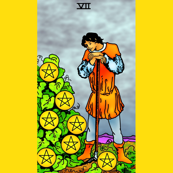 Seven of Pentacles copy