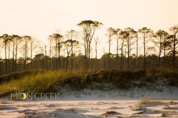 060517-topsail-320