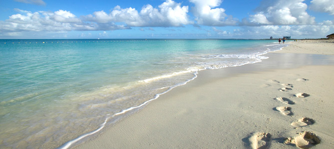 beach-main copy