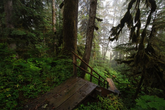 tongassnationalforest