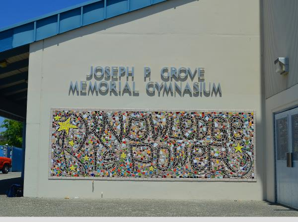 Knowledge Is Power - School Mosaic Mural