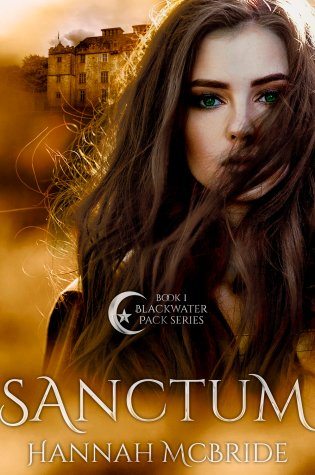 Release Day Blitz: Sanctum by Hannah McBride