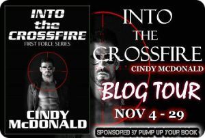 Into the Crossfire banner 7