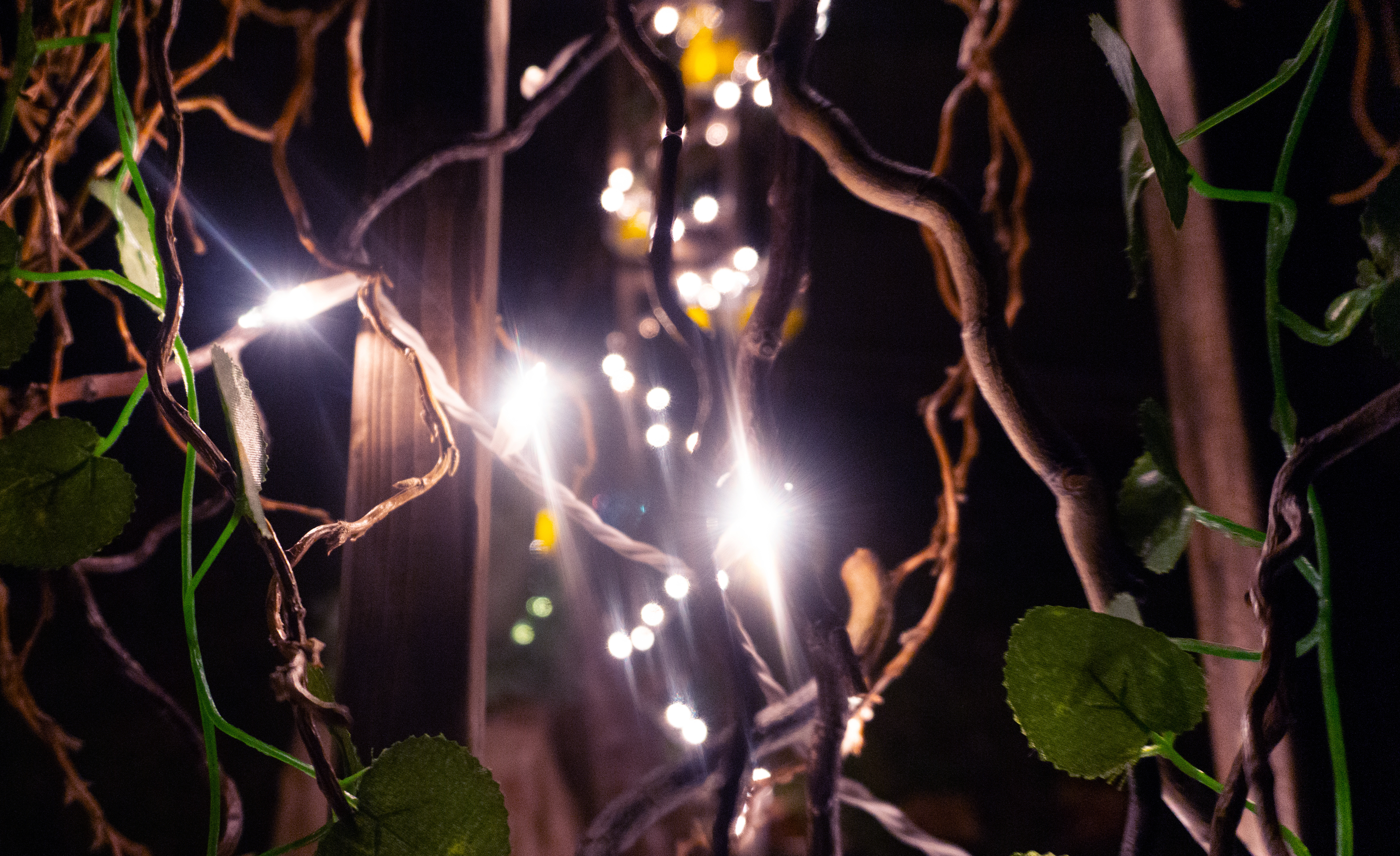 Curly Willow Vine with Lights