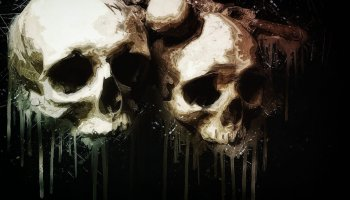 two white human skulls on black background