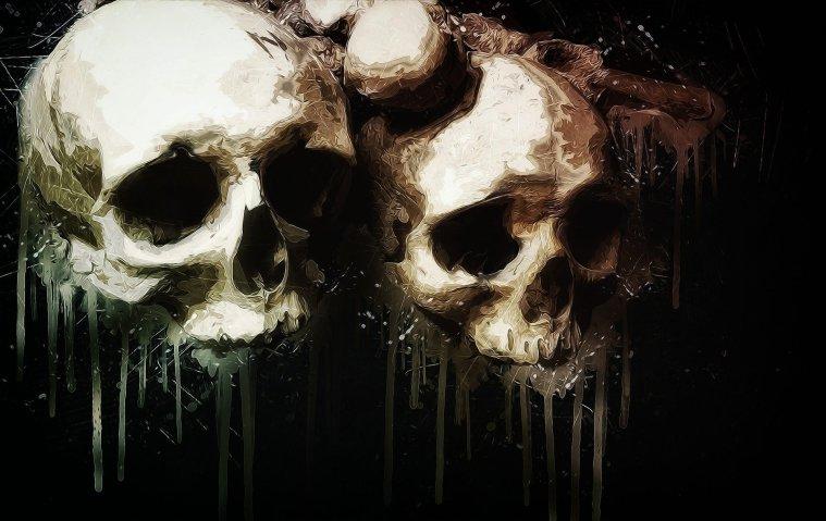 two white human skulls on black background