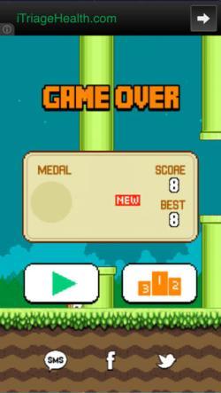 clappy_bird_5
