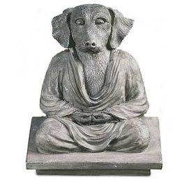 Dog Anatta (Non-Self)