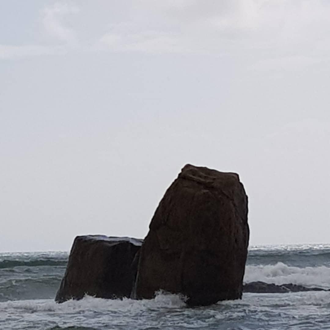 Island: Dharmagram #357
