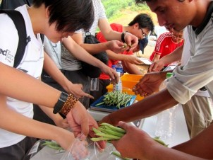 Gardening For Food: Vegetable packing race