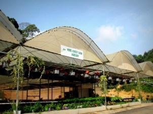 Food Forest Farm Nursery
