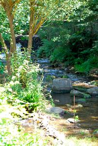 River running behind La Cascade