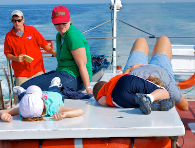Whale Watching is Hard Work