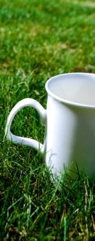 TeaMug3_Grass
